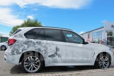 Аэрография BMW X5 Птицы - фото 2