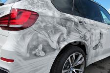 Аэрография BMW X5 Птицы - фото 3