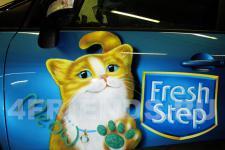 "Renault ""Fresh step"" фото 4"
