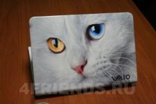 аэрография Ноутбук Sony кошка - аэрография №2
