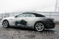 аэрография BMW 6 пантеры - аэрография №3