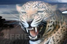 аэрография Infiniti FX35 леопарды - аэрография №3